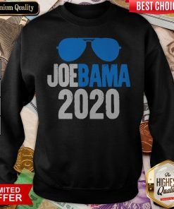 Anti Trump Biden Obama 2020 USA Election Fun Gift Sweatshirt