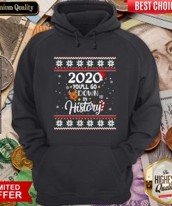 Good 2020 You'll Go Down In History Funny Christmas Ugly Sweater Hoodie - Design By Viewtees.com