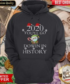 Good 2020 You'll Go Down In History Elf Wear Mask Christmas Hoodie - Design By Viewtees.com