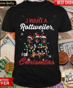 I Want A Rottweiler For Christmas Shirt - Design By Viewtees.com